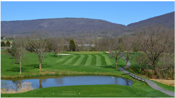 things to do near River Bluff Farm B&B - golf at Shenvalee Golf Resort
